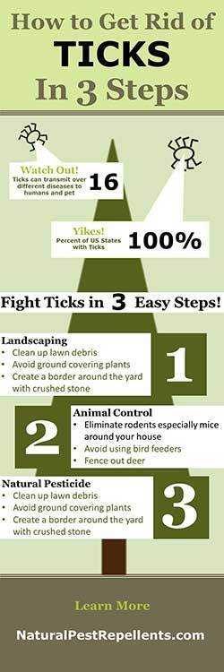 how to get rid of ticks in your yard infographic